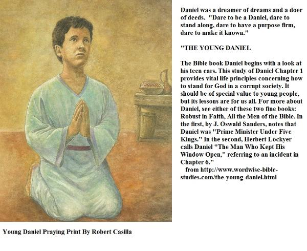 a look at daniel in the bible
